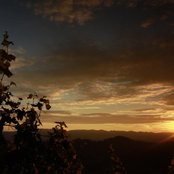 Imagefilm Steiermark